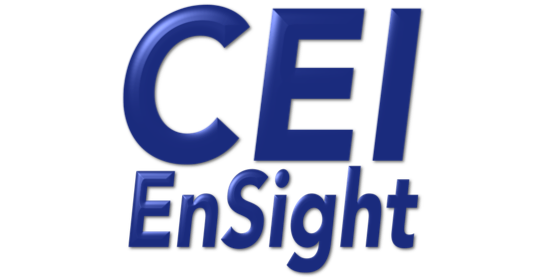 CEI Ensight